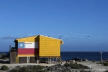 PAYSA_26922 - Punta Chorros, Amérique du Sud, Chili