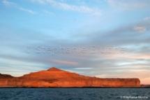 PAY_0705 - Puerto pyramides, Patagonie Chubut, Argentine, Amérique du Sud