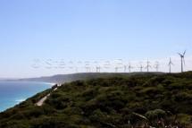 PAY_9650 - Heoliene / Windmill _ Esperance, Western Australia, Australie
